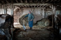 A Century Of Farming – A Photographic Exhibition At COA's Ethel H. Blum Gallery – Curated By Maine Farmland Trust Gallery