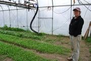 New Breed Of Maine Farmers Say Survival Depends On Optimism, Ingenuity