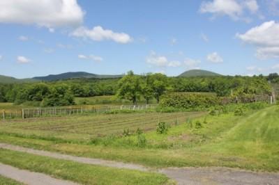 Walking Tours Of Rokes Farm