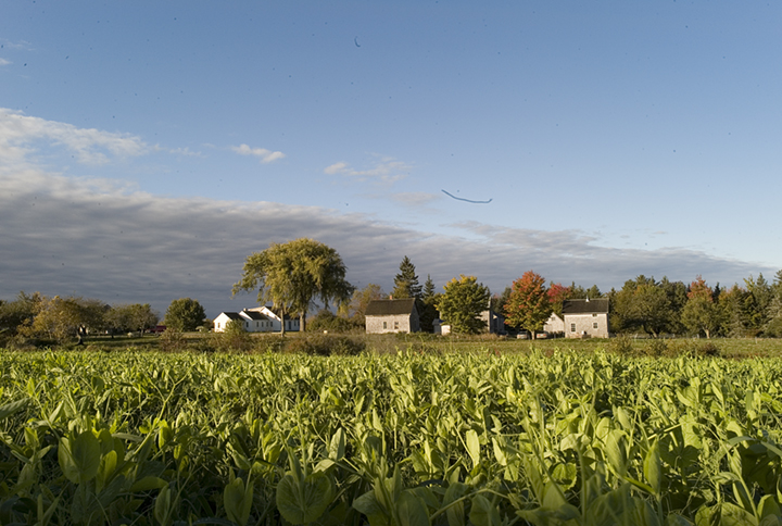 Is Farming The Key To Maine's Future?