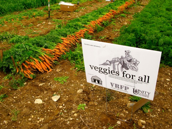 Case Study: Veggies For All
