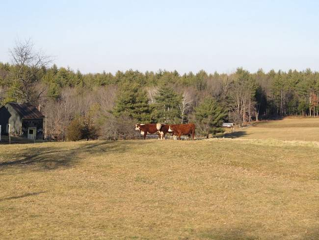 Lapierre Family Protects 69-acre Farm