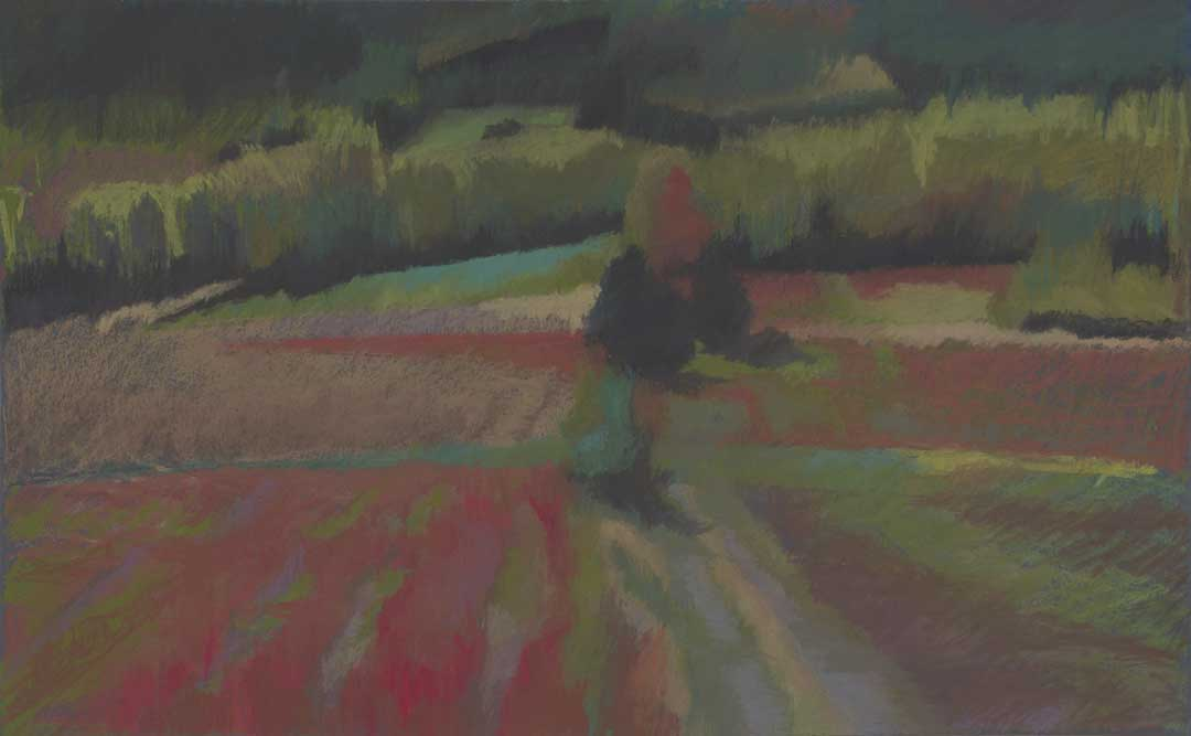 Thérèse L. Provenzano Buckwheat No. 9- It Can Be Divided, Red And Green Bouchard's Family Farm, Wallagrass, ME Pastel On Paper 21 H X 29 W
