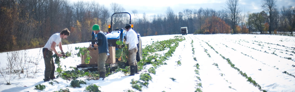 Shared-Use Farm Equipment - MAINE FARMLAND TRUST