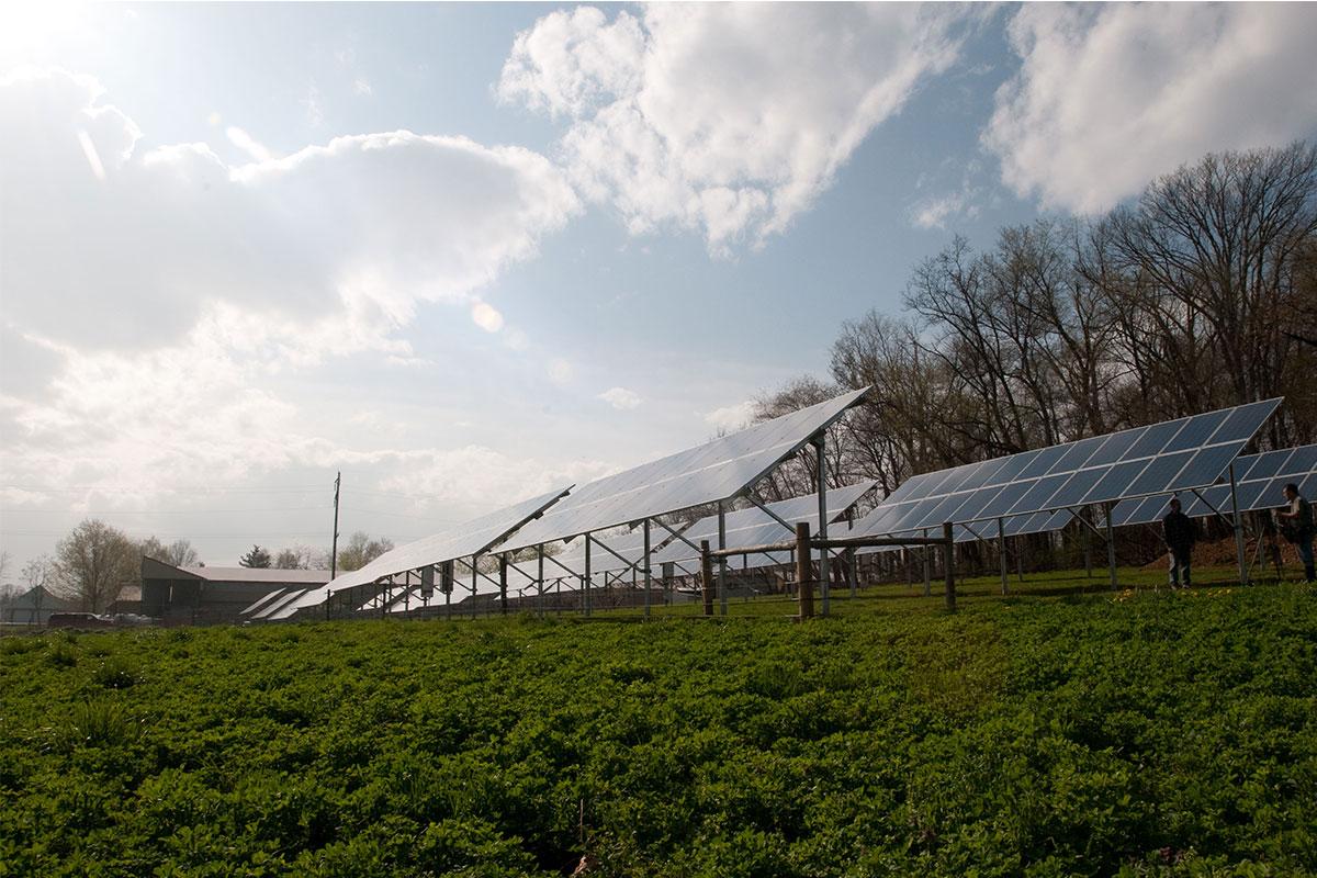 Solar On A Farm