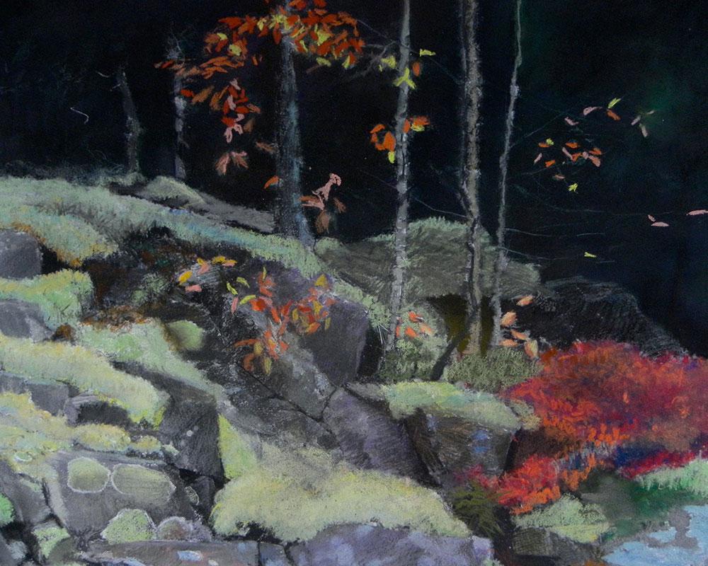 Artwork Of Jude Valentine / Reindeer Lichen / Acadia National Park Featured In New Exhibit  At U.S. Botanic Garden In DC