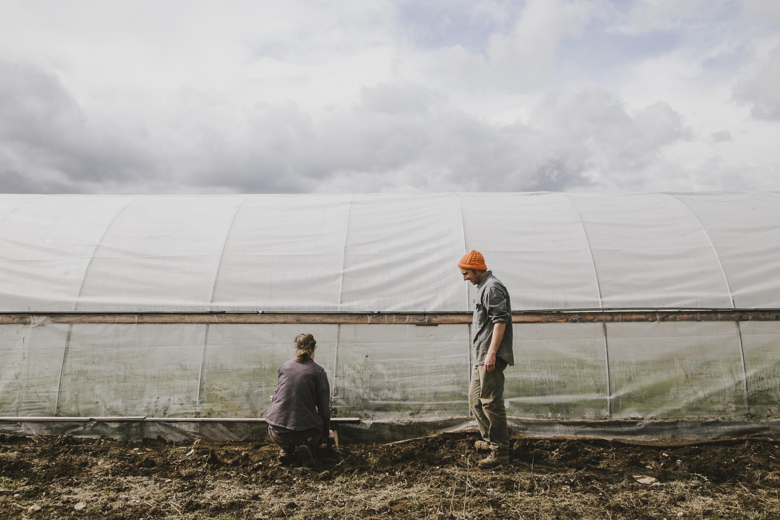 Meet Your Farmers: Fine Line Farm