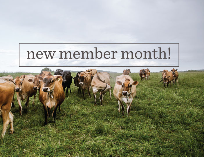No Better Time To Join The Herd: July Is New Member Month