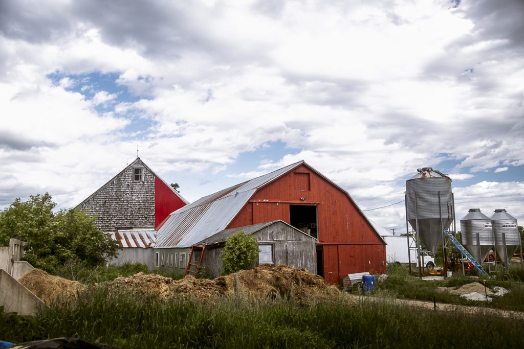 Young Dairy Farmers: The Milkhouse - MAINE FARMLAND TRUST