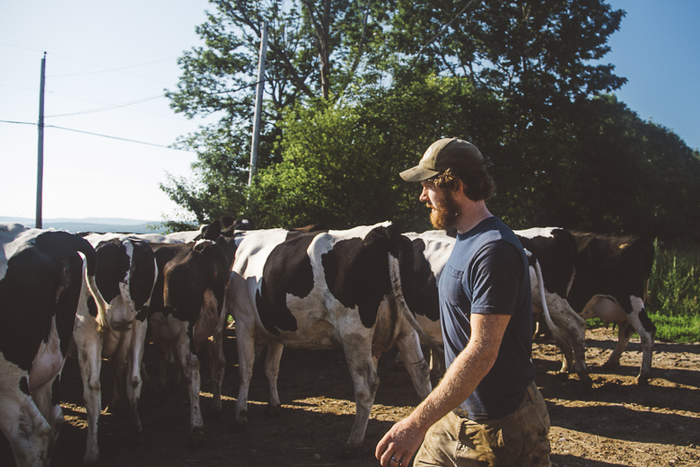 Young Dairy Farmers: Bo Lait - MAINE FARMLAND TRUST