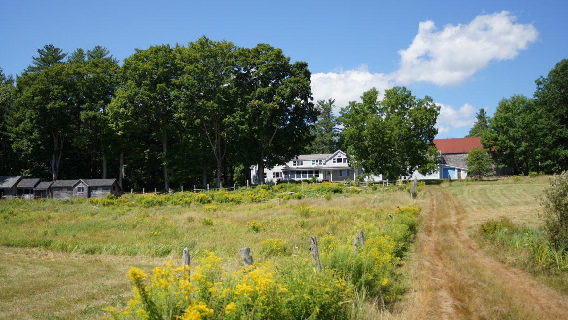 Back field and Fiore House