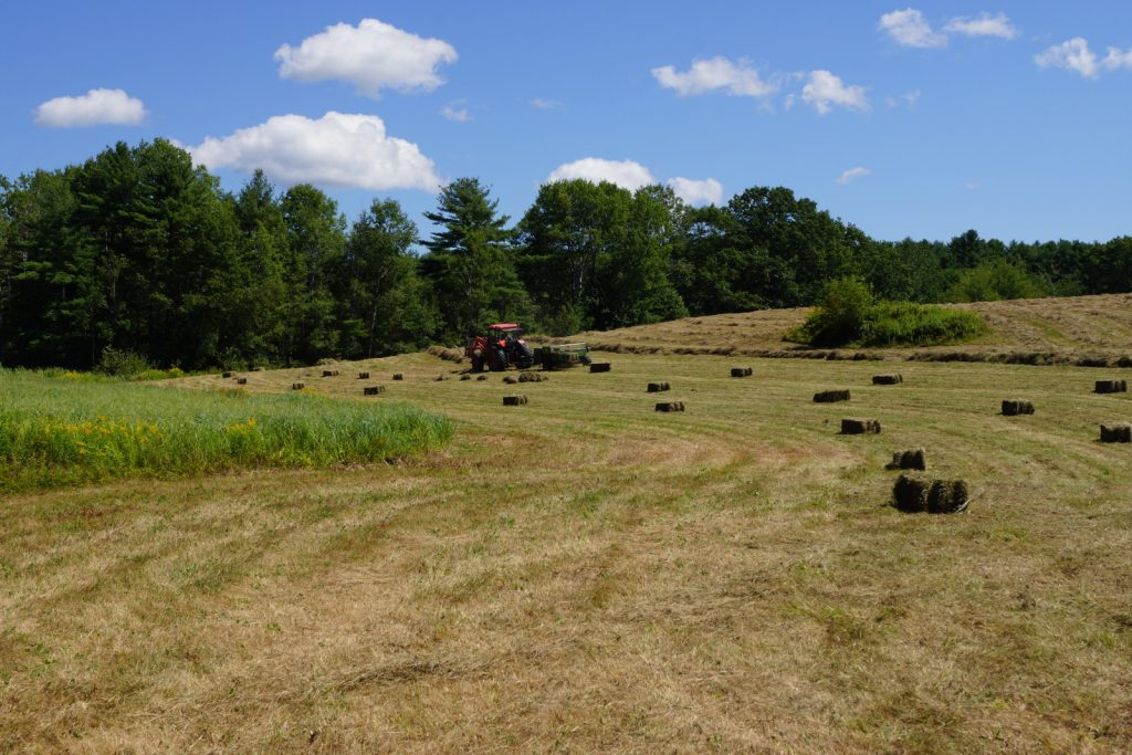 Rolling Acres Hay Fields