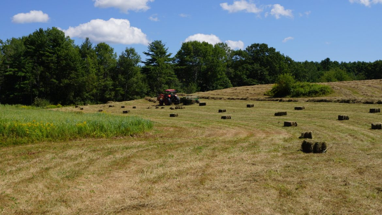 Rolling Acres Hay Fields