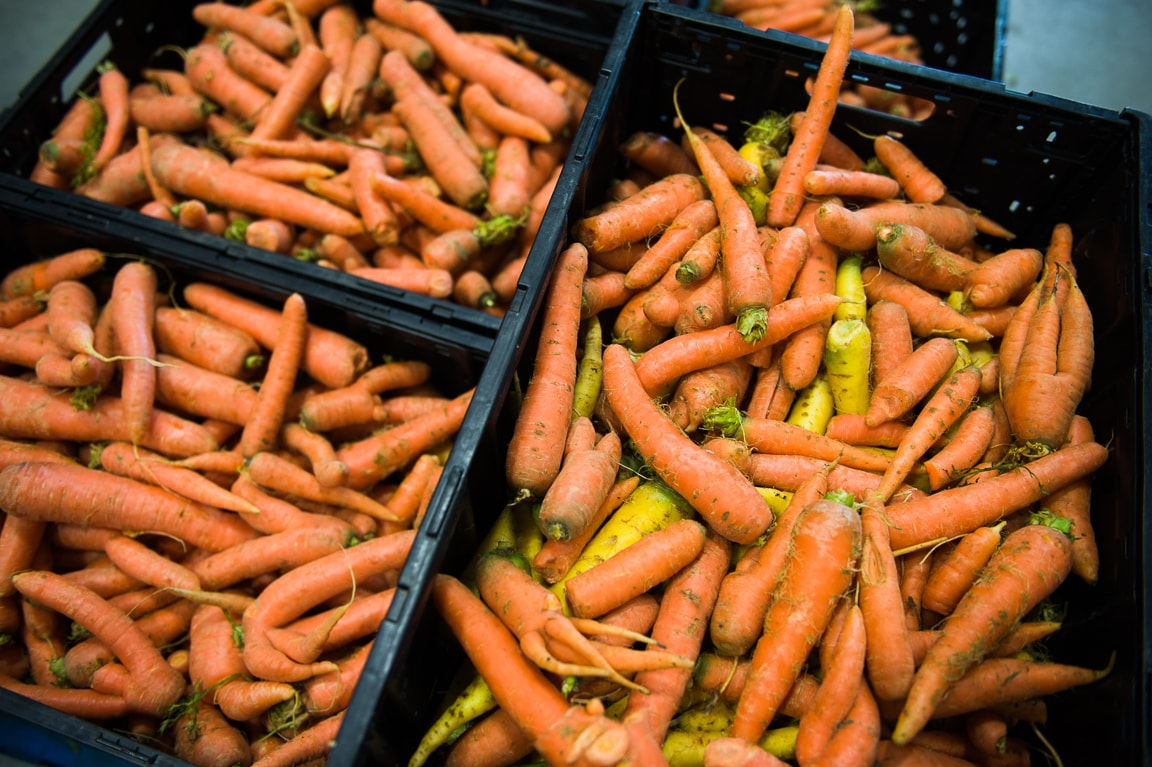 Two Farms Receive First Farming For Wholesale Implementation Grants