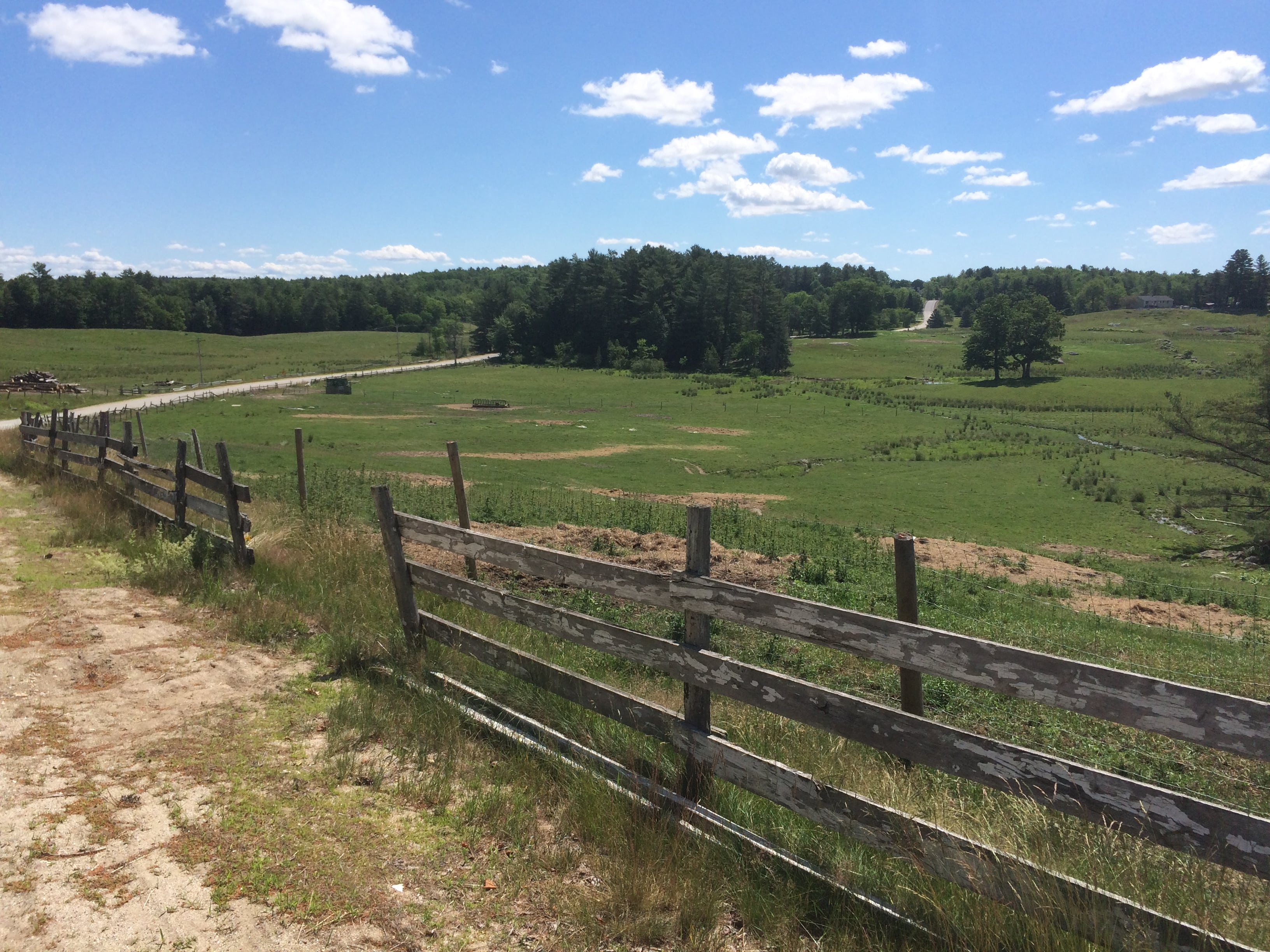 427 Acres Of Farmland Protected In New Gloucester