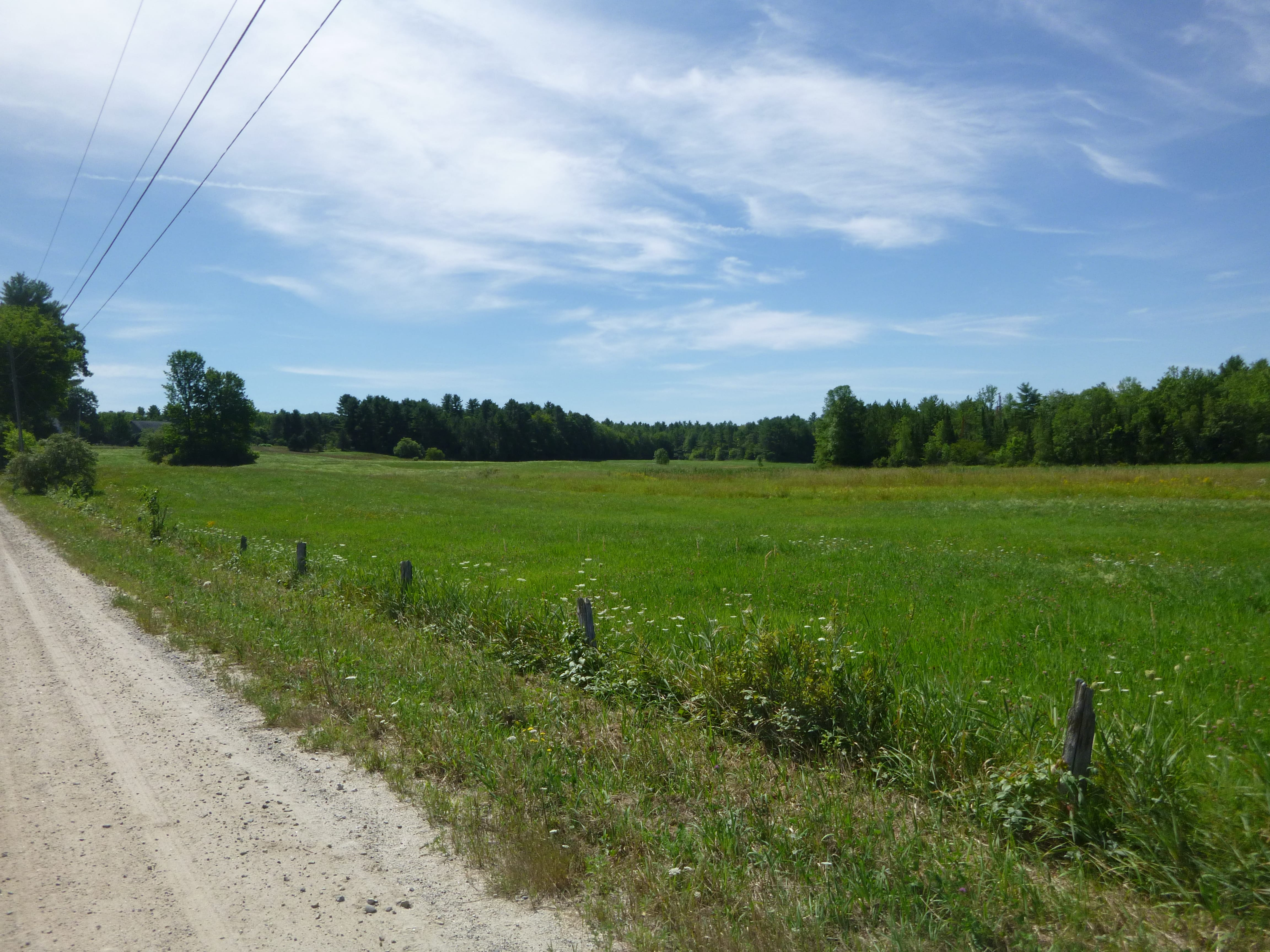Maine Farmland Trust Will Soon Be Looking For A Farmer To Purchase 143 Acres Of Land In Windham.