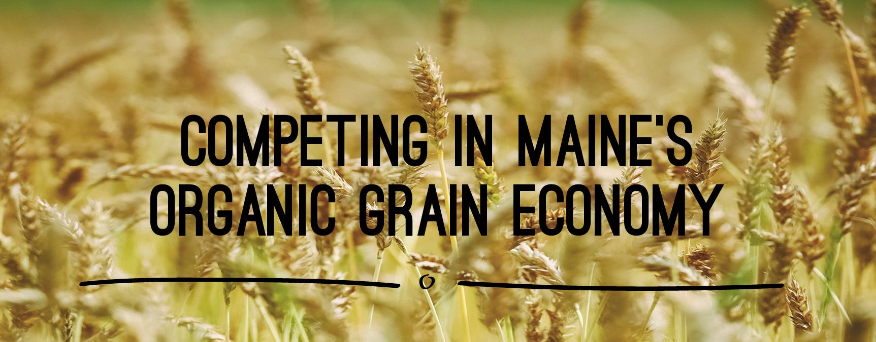 Maine Grain
