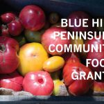 Grants available for community food projects on the Blue Hill Peninsula