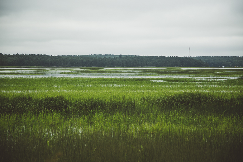 Over $2 Million In Federal Funds To Support Comprehensive Conservation Of Farmland And Marsh Habitat