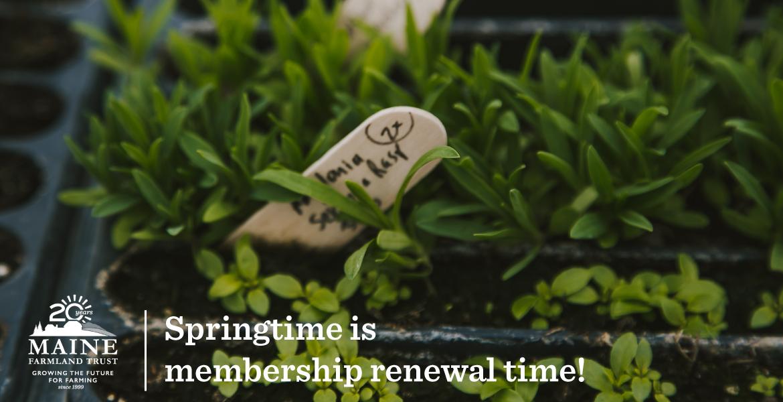 April Is Member Renewal Month!