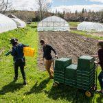 Twenty-five community food grants awarded on Blue Hill Peninsula