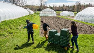 Twenty-five community food grants awarded on Blue Hill Peninsula