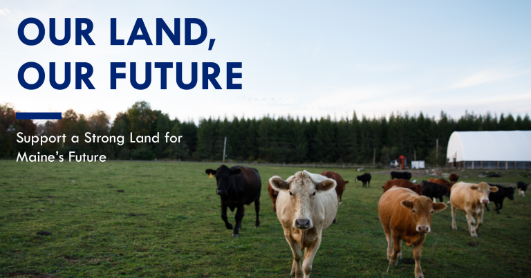 Policy Update: Land for Maine's Future