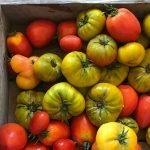 August Harvest: a monthly digest of articles, podcasts & more