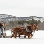 Maine Farms Holiday Gift Guide