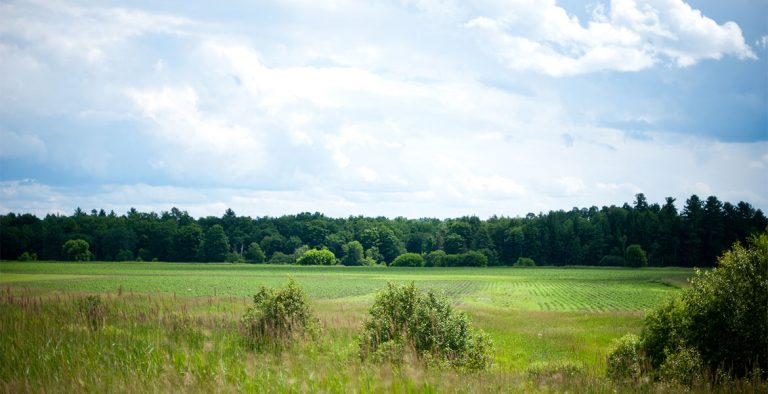 Purchasing Protected Land