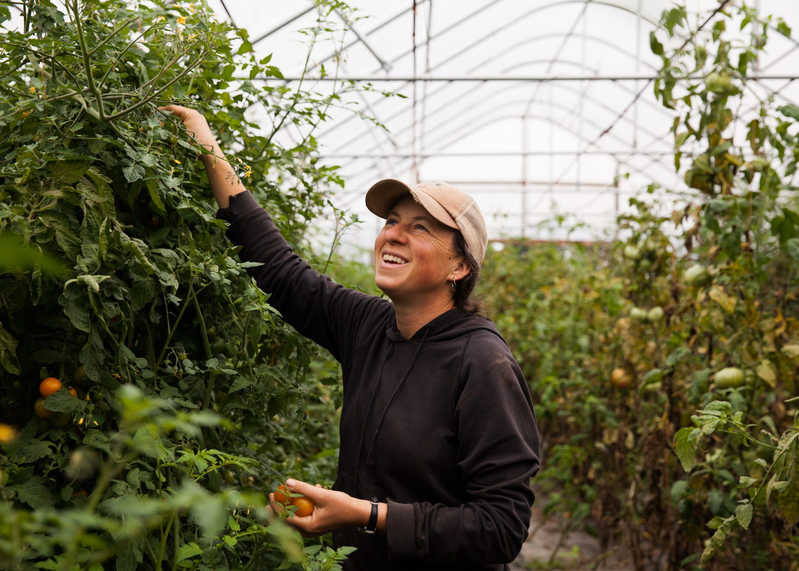 Beth Schiller, Wearing A Brown Ball Cap And Black Jacket, Picks Tomatoes In A Greenhouse. She's Looking Up And Smiling.