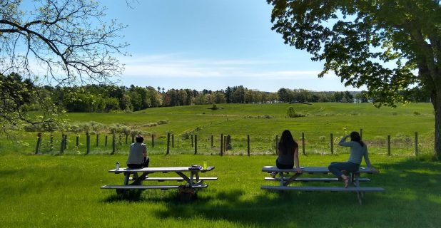 MFT's Land Stewards Looking Out On A Green Maine Farm Landscape, Sitting On Top Of Wood Picnic Tables Under A Blue Sky.