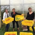 Blue Hill Community Food Projects Funded in Wake of COVID 19