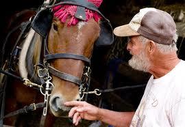 Maine Farmer with Horse